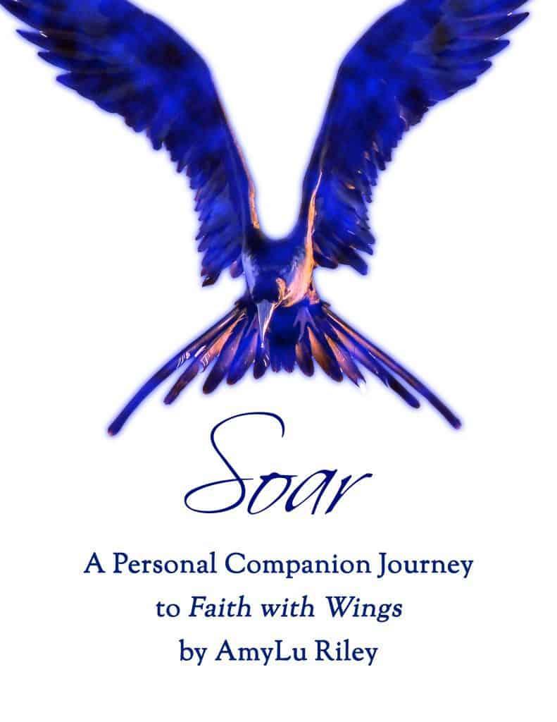 Cover of Free Soar Devotional by AmyLu Riley