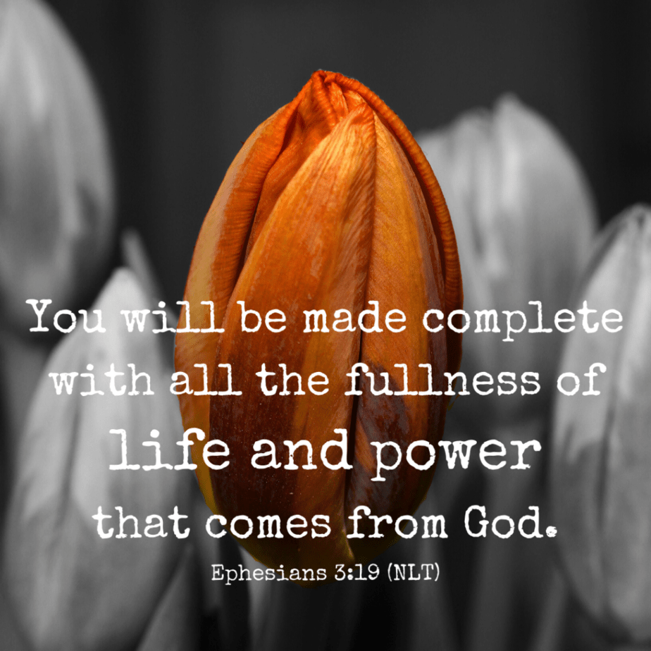 You will be made complete with all the fullness of life and power that comes from God. - Ephesians 3:19 (NLT)