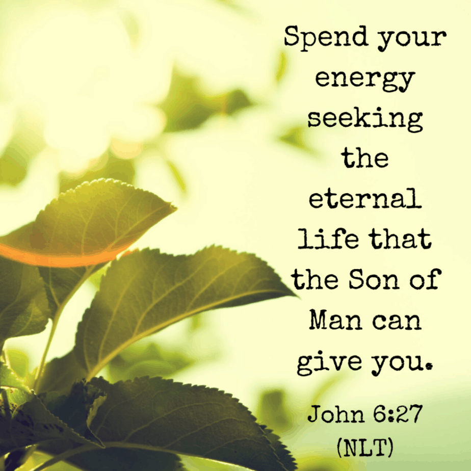 Spend your energy seeking the eternal life that the Son of Man can give you. John 6:27 (NLT)