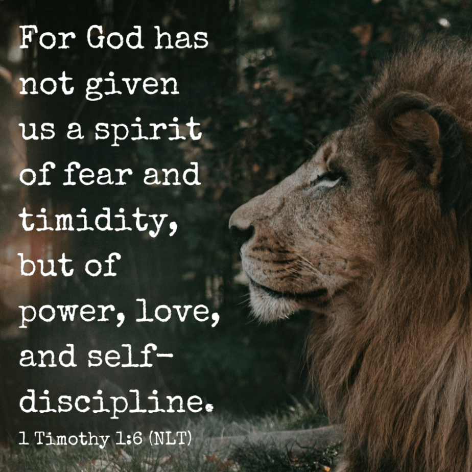 For God has not given us a spirit of fear and timidity, but of power, love, and self-discipline. - 1 Timothy 1:6 (NLT)
