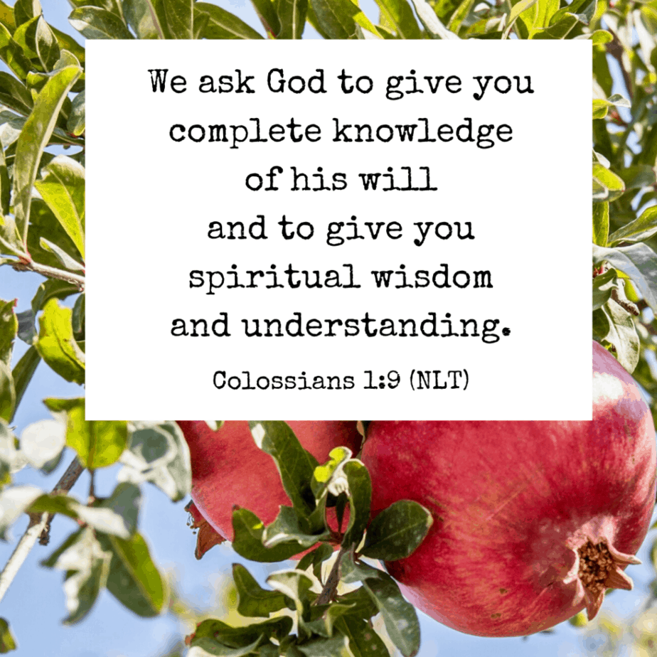 We ask God to give you complete knowledge of his will and to give you spiritual wisdom and understanding (Colossians 1:9 NLT).