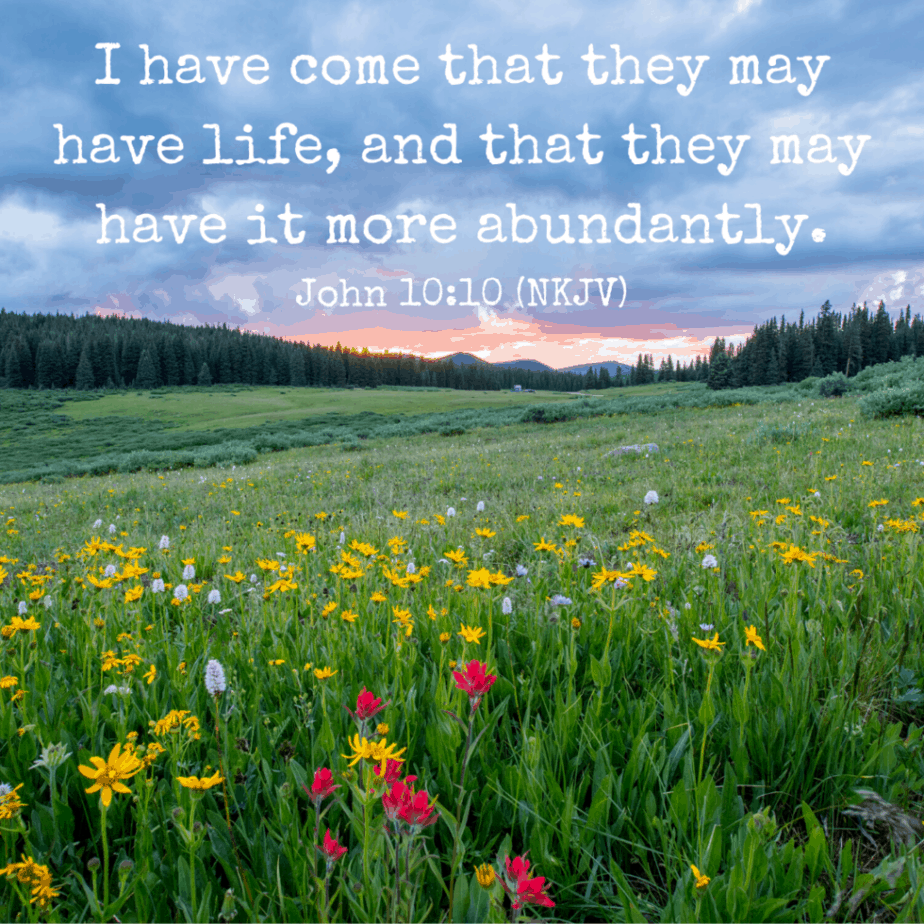 I have come that they may have life, and that they may have it more abundantly. John 10:10 (NKJV)