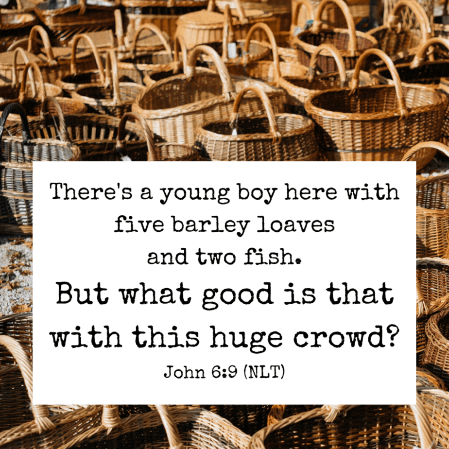 There's a young boy here with five barley loaves and two fish. But what good is that with this huge crowd? John 6:9 (NLT)