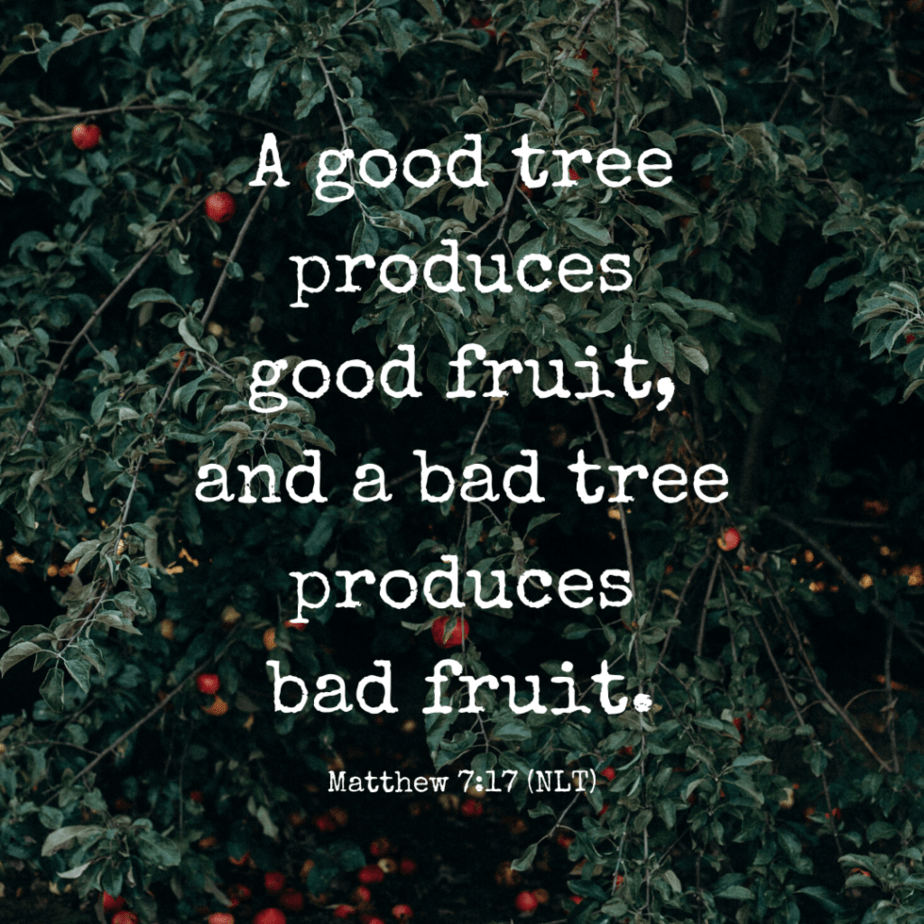 A good tree produces good fruit, and a bad tree produces bad fruit. - Matthew 7:17 (NLT)