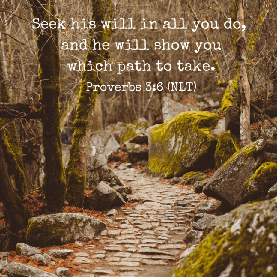 Seek his will in all you do, and he will show you which path to take. Proverbs 3:6 (NLT)