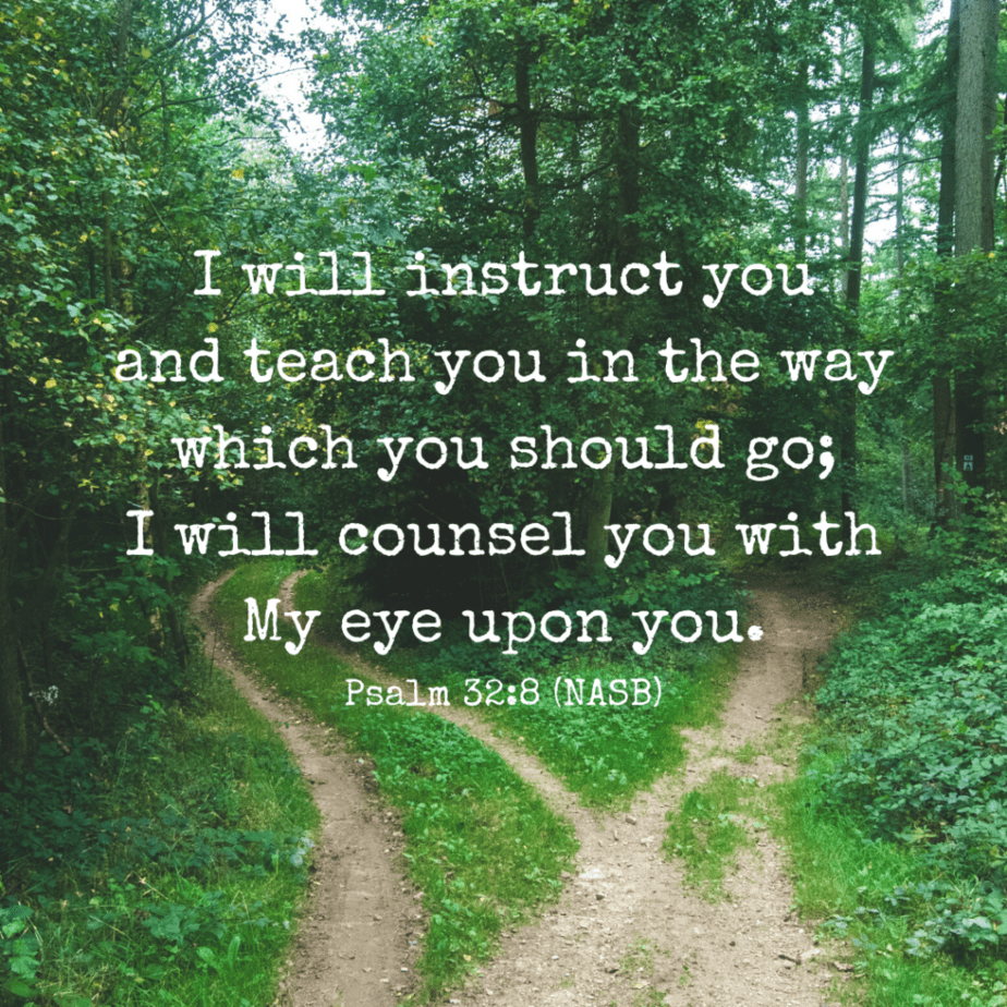 I will instruct you and teach you in the way which you should go; I will counsel you with My eye upon you. Psalm 32:8 (NASB)