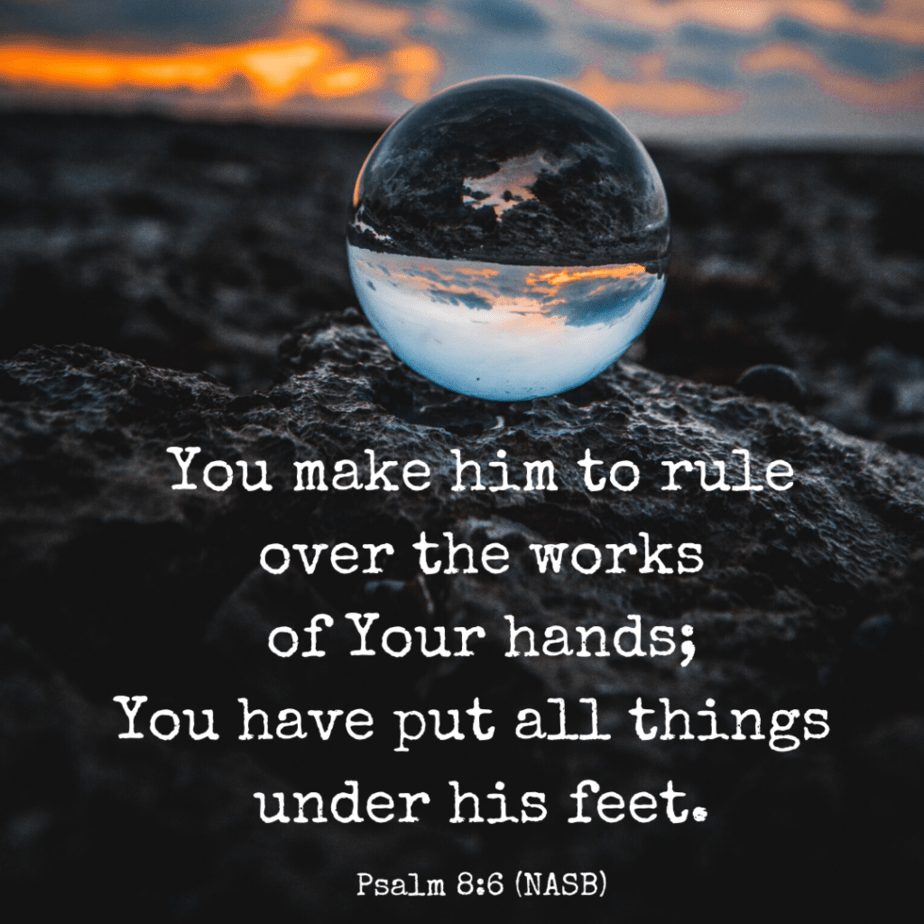 You make him to rule over the works of Your hands; You have put all things under his feet. Psalm 8:6 (NASB)