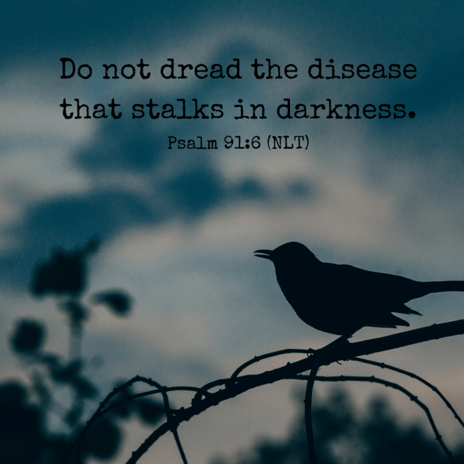 Do not dread the disease that stalks in darkness. Psalm 91:6 (NLT)